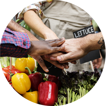 Community Produce from Aquaponics