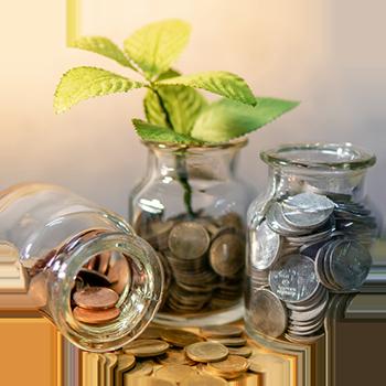 Economy - Jars of Coins & Leaf