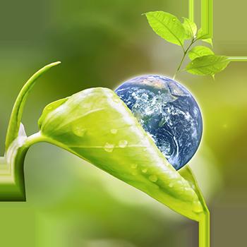 Save the Planet Aquaponics